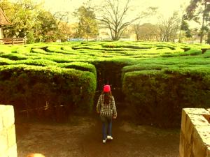 crea:labirinto